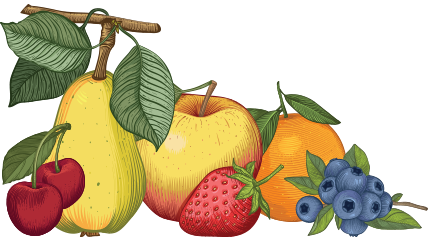 cartoon style art of fruit used in Black River Juice